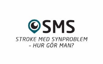 Seminarium i Kalmar den 12 maj 2015 – på strokedagen